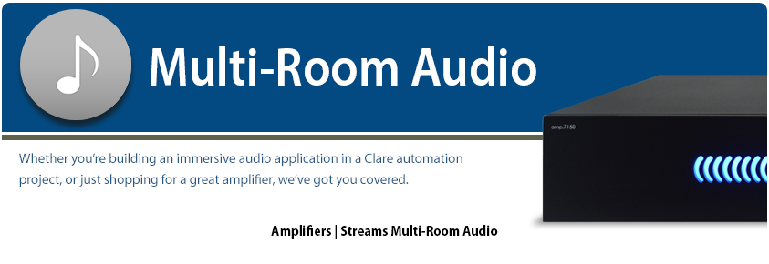 Multi-Zone Audio and Distributed Video Entertainment Products